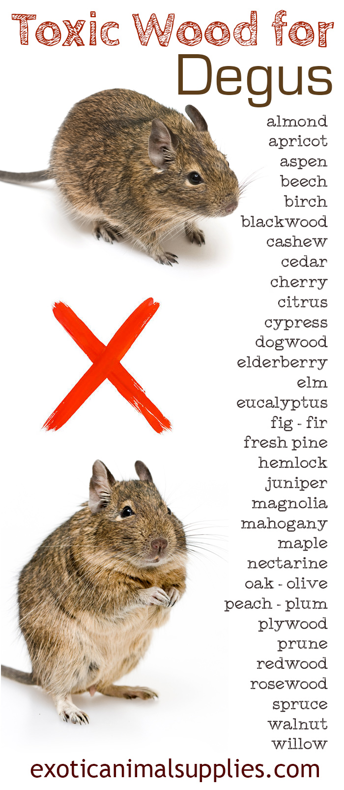 Complete List of Toxic Wood for Degus