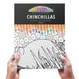 Chinchilla Adult Coloring Book