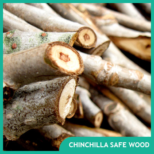 Chinchilla Safe Wood for Toys, Shelves, and Chews