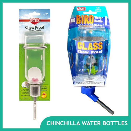 Chinchilla Water Bottles