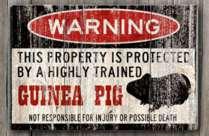 Guinea Pig Property Protection Warning Sign Gifts for Guinea Pig Lovers