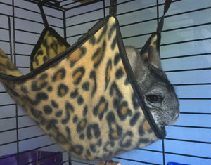 Fleece Chinchilla Hammock