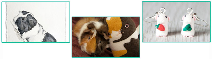 Gifts for Guinea Pig Lovers & Owners