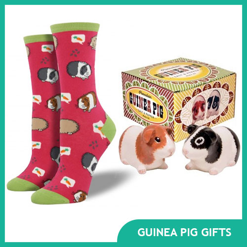 Gifts for Guinea Pig Lovers and Owners