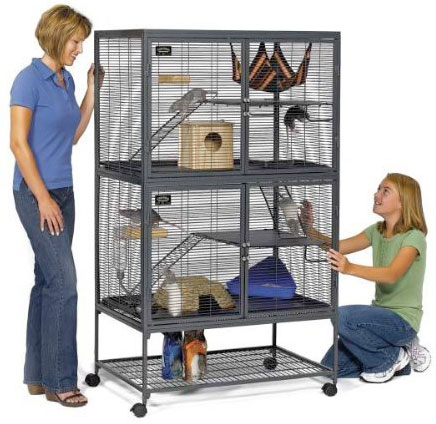 Best Chinchilla Cage for Your New Pet