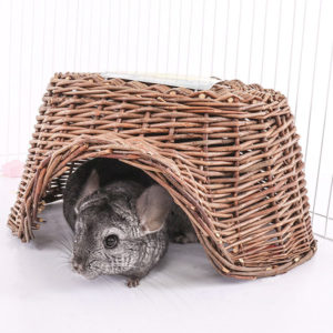 Chinchilla Toys for Play Time