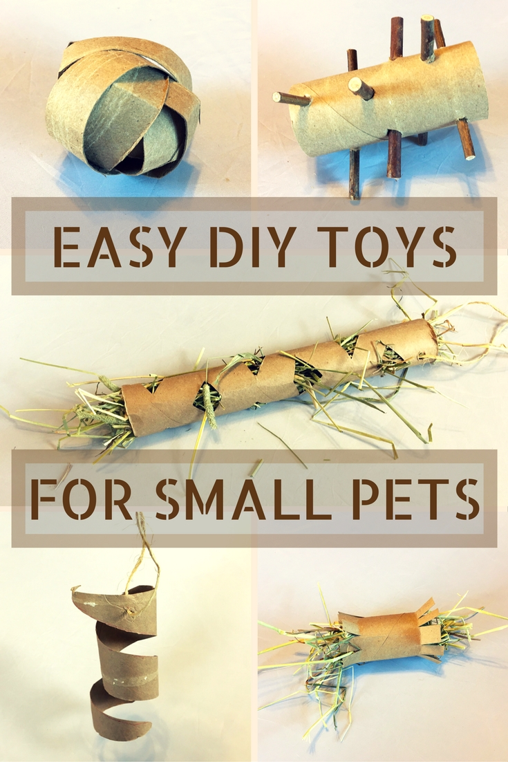 Easy DIY Toys for Small Pets - Rabbits, Guinea Pigs, Chinchillas