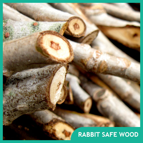 Safe Wood for Rabbits for Toys, Chews, & Cages