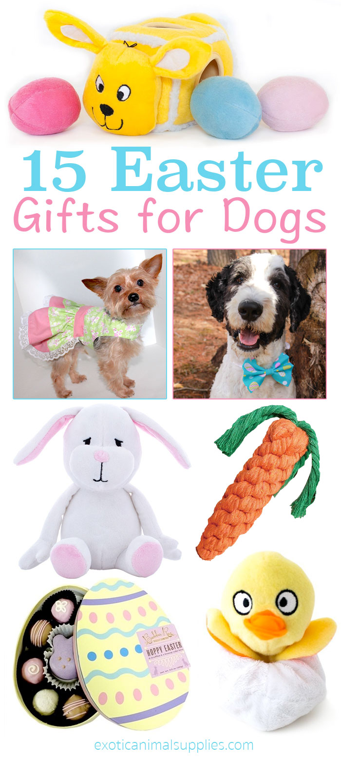 Easter Gifts for Dogs & Puppies