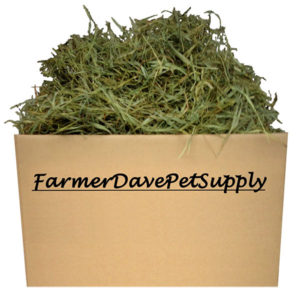 Farmer Dave Pet Supply Timothy Hay for Bunnies