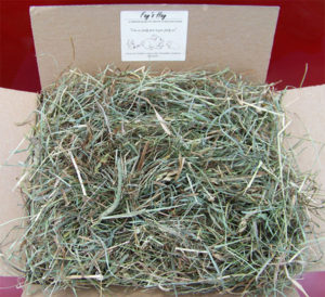 Timothy Hay & Orchard Grass Blend for Rabbits