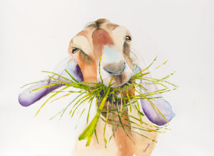 Goat Watercolor Art Print Gift Idea for Goat Lovers