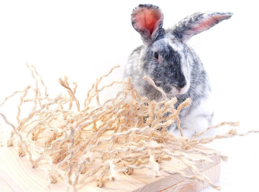 Pet Rabbit Toys & Bunny Chews - Digging Toys