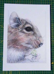 Degu Art Print Owner Gift