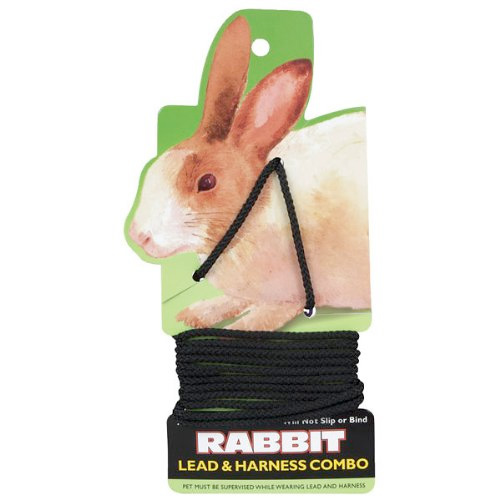 Never Buy Dangerous Rabbit Leash