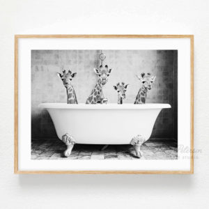 Four Giraffes in a Bath Art Print