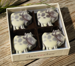 Cow Chocolates