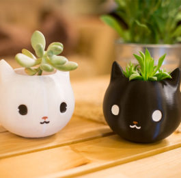 Kitty Cat Planters