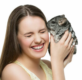 How to Bond with Your Pet Chinchilla